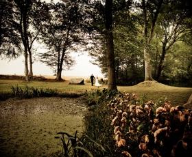 bryllupsfoto i skoven