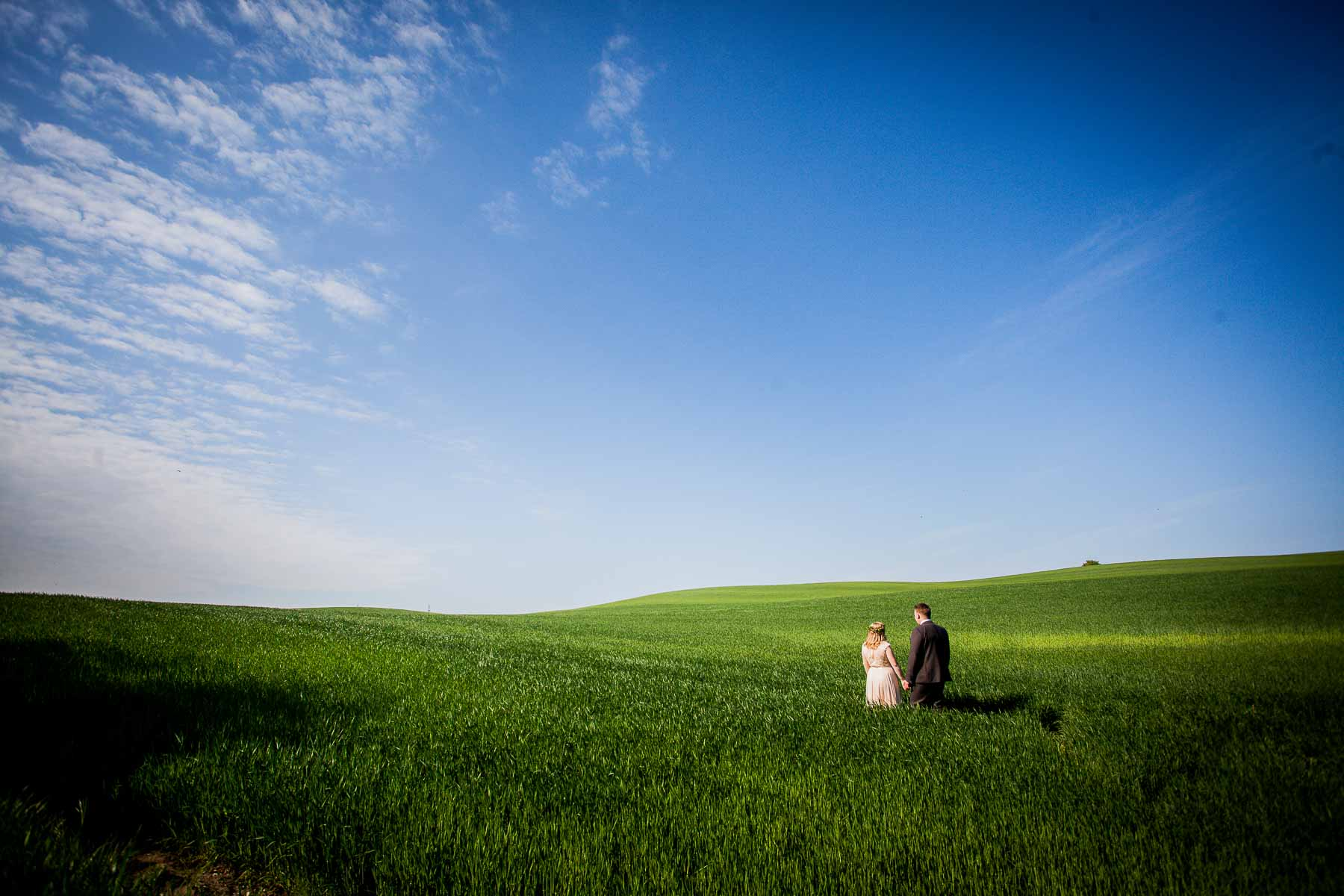 Bryllupsfoto i naturen horsens