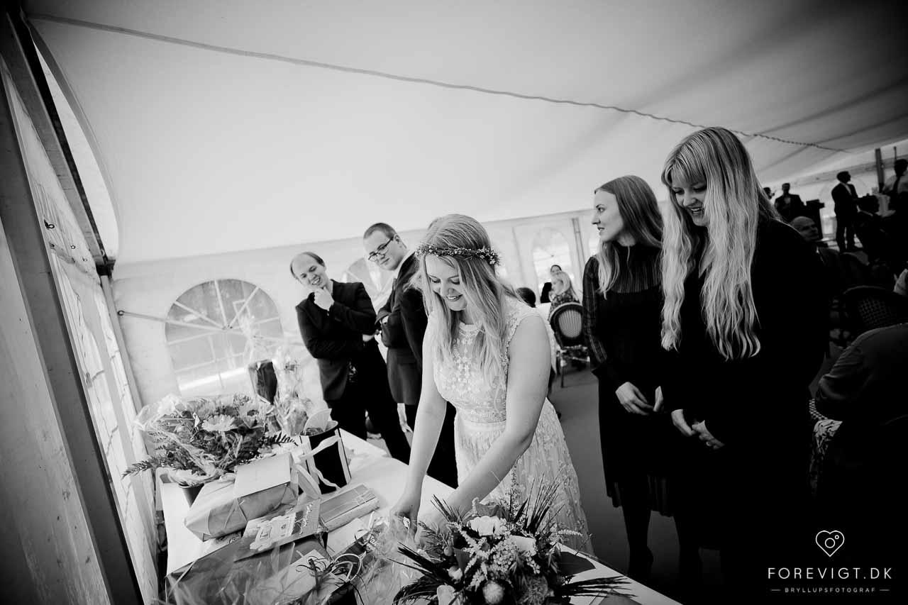Din bryllupsfotograf i Ikast, Herning og midtjylland