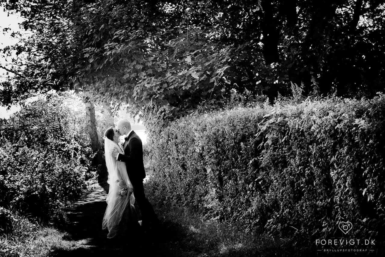 Dygtige bryllupsfotografer Dronninglund