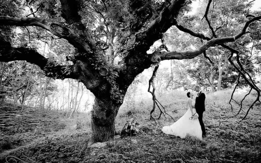bryllupsfotograf-1-80