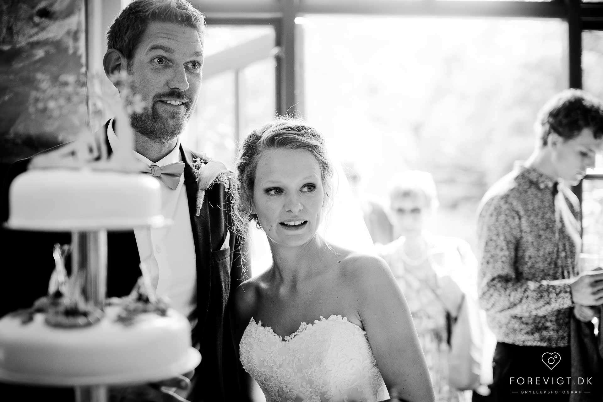 Ryå Efterskole brudepar
