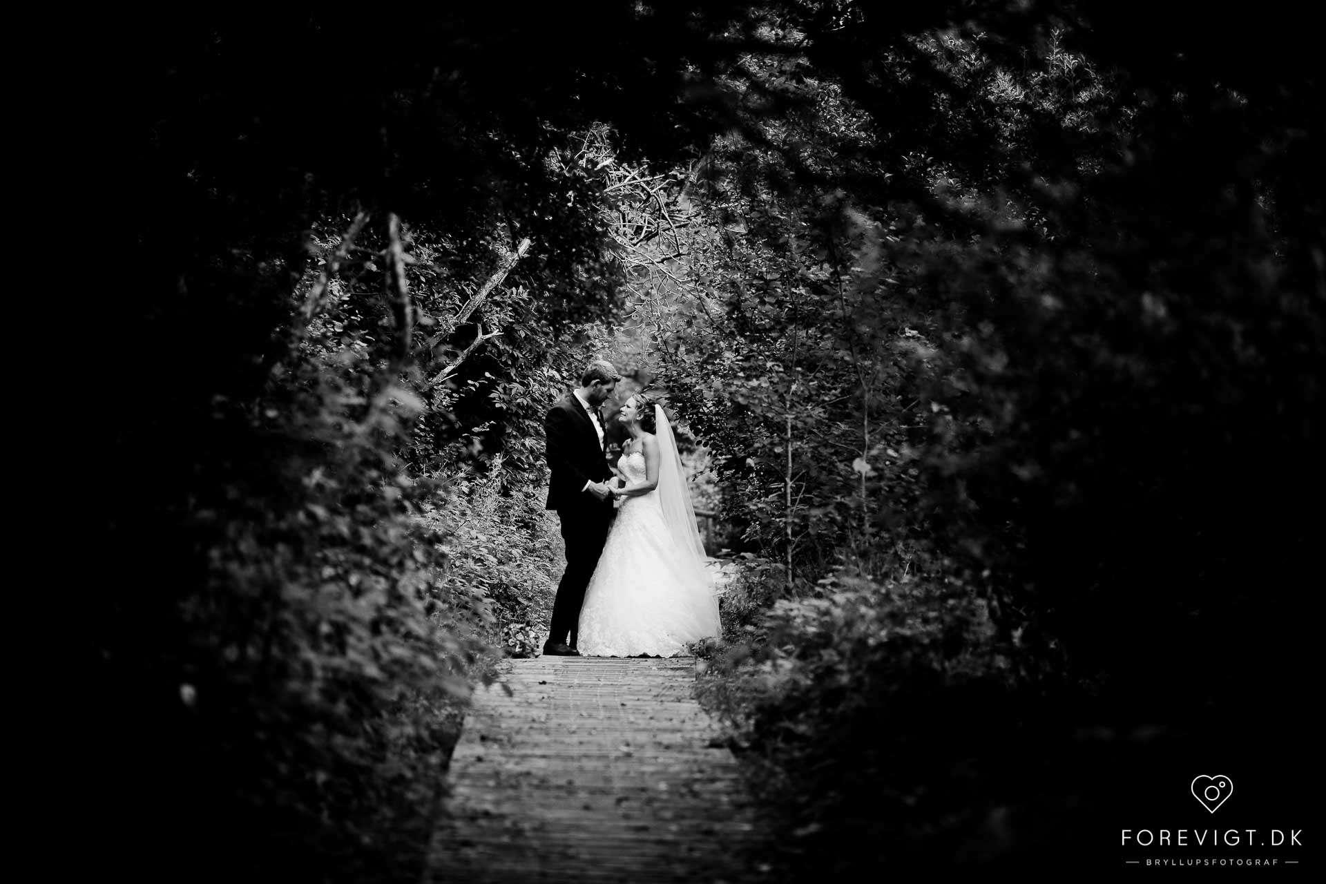bryllupsbilleder taget i Nordjylland