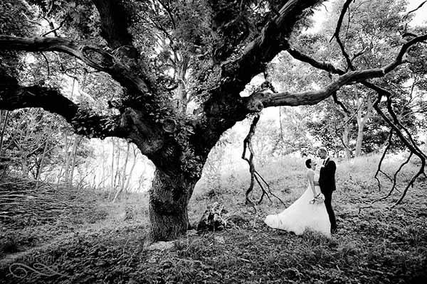 bryllupsfotograf forevigt Aarhus