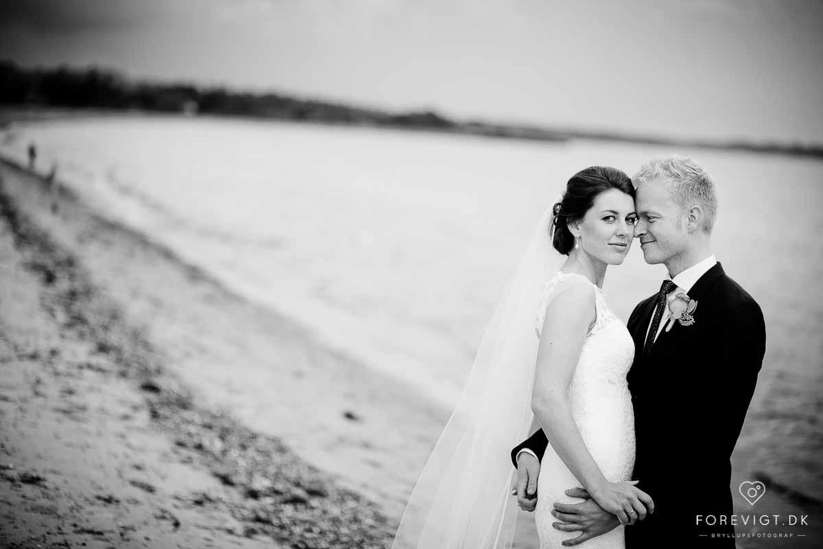 Billeder af molskroen bryllup
